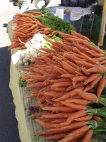 Farmers Market Carrots and Garlic