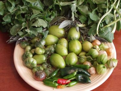 Green Tomatoes, Chiles, Tomatillos, Sage & Arugula