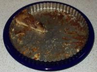 Apple Pecan Tart - after Thanksgiving