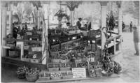 Farmers' Market on the Santa Fe Plaza Bandstand circa 1886