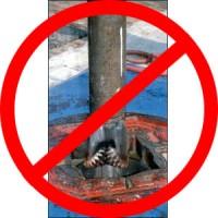 No Oil Drill Bit