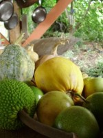 WWOOF Hawaii - Tropical Fruit